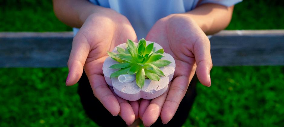 植物方塊 GrowCube
