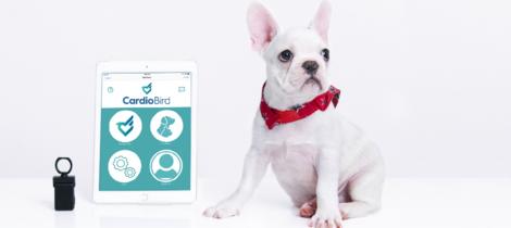 ANIWARE 是一間專注於寵物健康數據分析的AI公司,我們的使命是透過數據分析服務,為獸醫師、寵物與飼主帶來更好的生活,革新寵物健康領域。