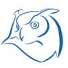 INSIGHTEYE Logo