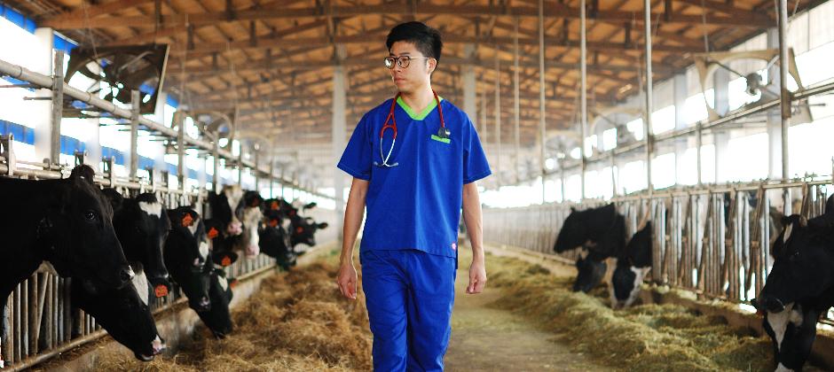 鮮乳坊獸醫團隊用專業守護鮮乳品質,我們相信牛好,奶才會好
