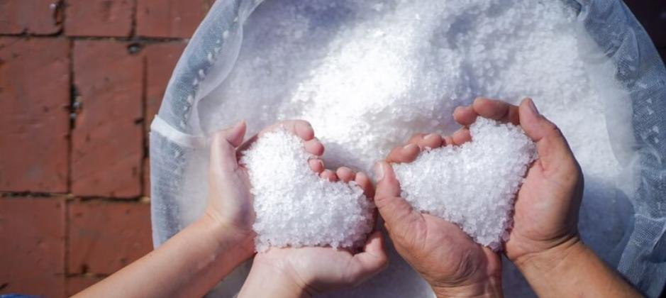 台灣鹽之花生態鹽田|嘉義洲南鹽場